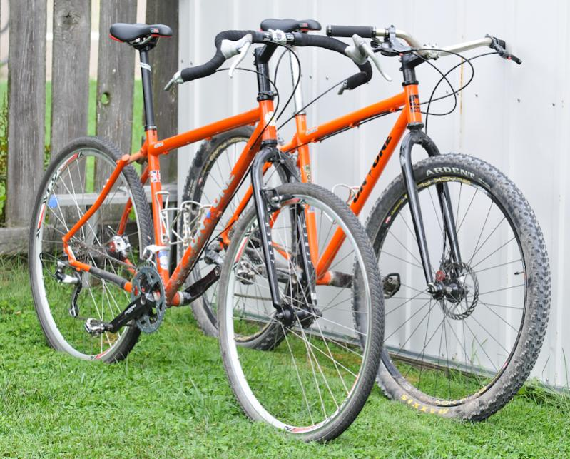 2 new Inbreds - and Monstercross-dsc_7636.jpg