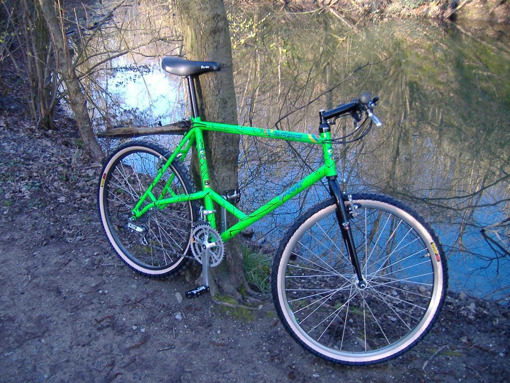 Elevated chainstay bike history questions.-dscf00382.jpg