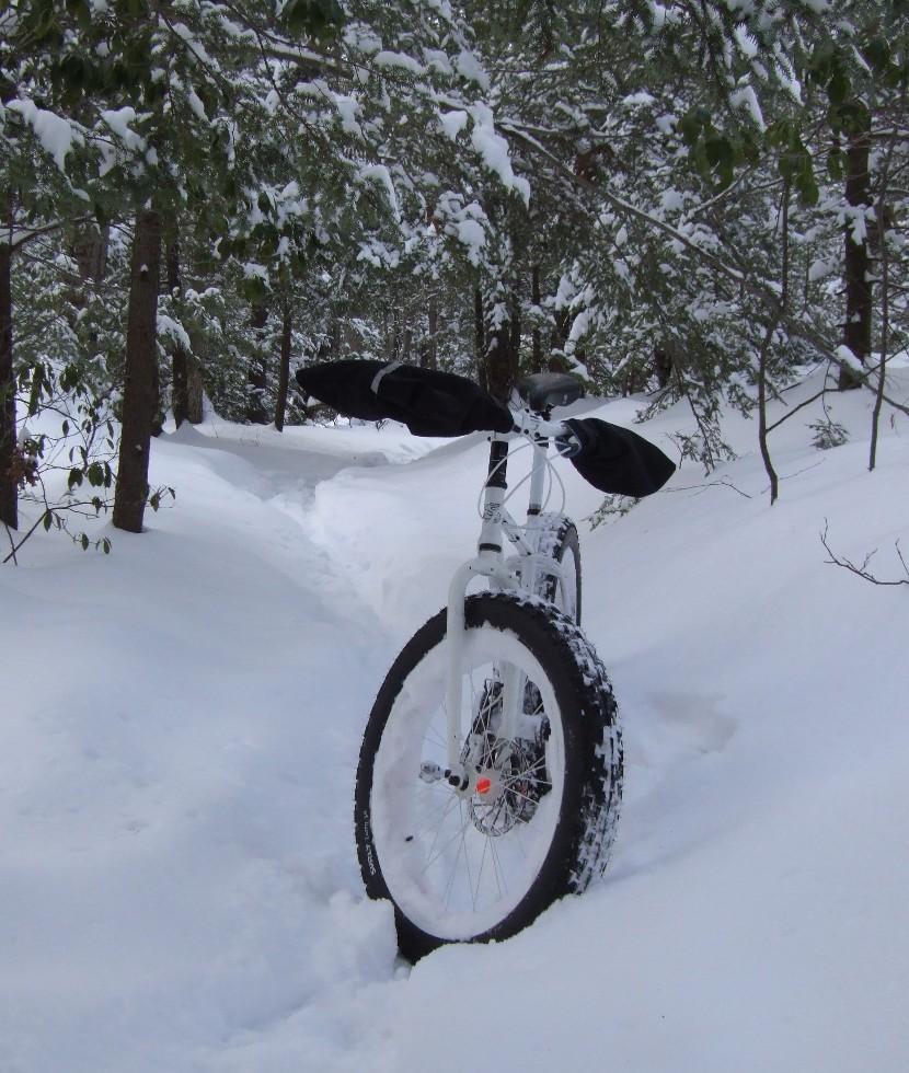 Daily fatbike pic thread-dscf0074s.jpg