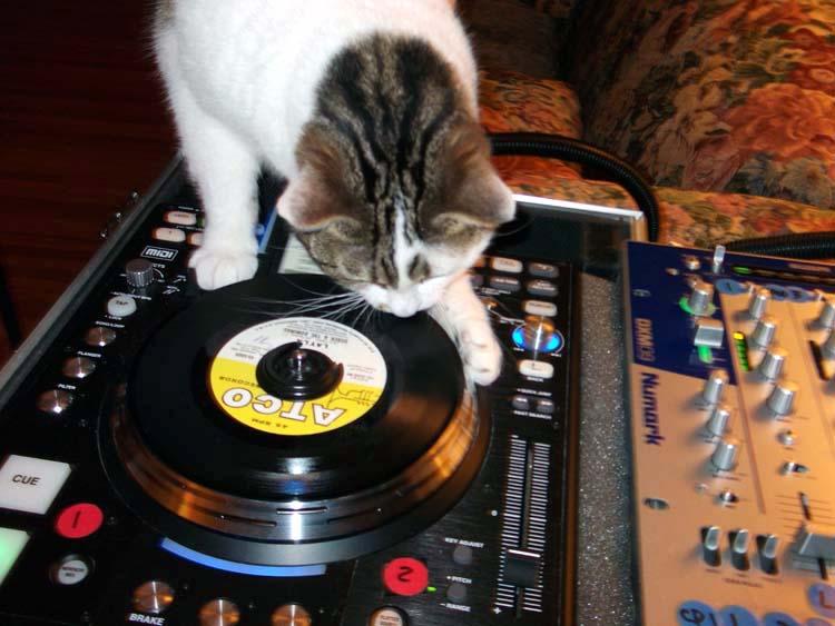 Show us your DJ system-dscf0210.jpg.jpeg