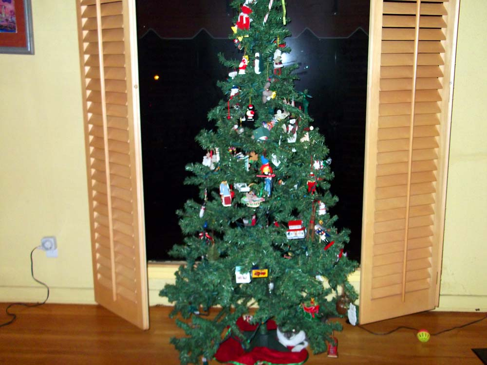 Pay it forward: fake Xmas tree-dscf0703.jpg