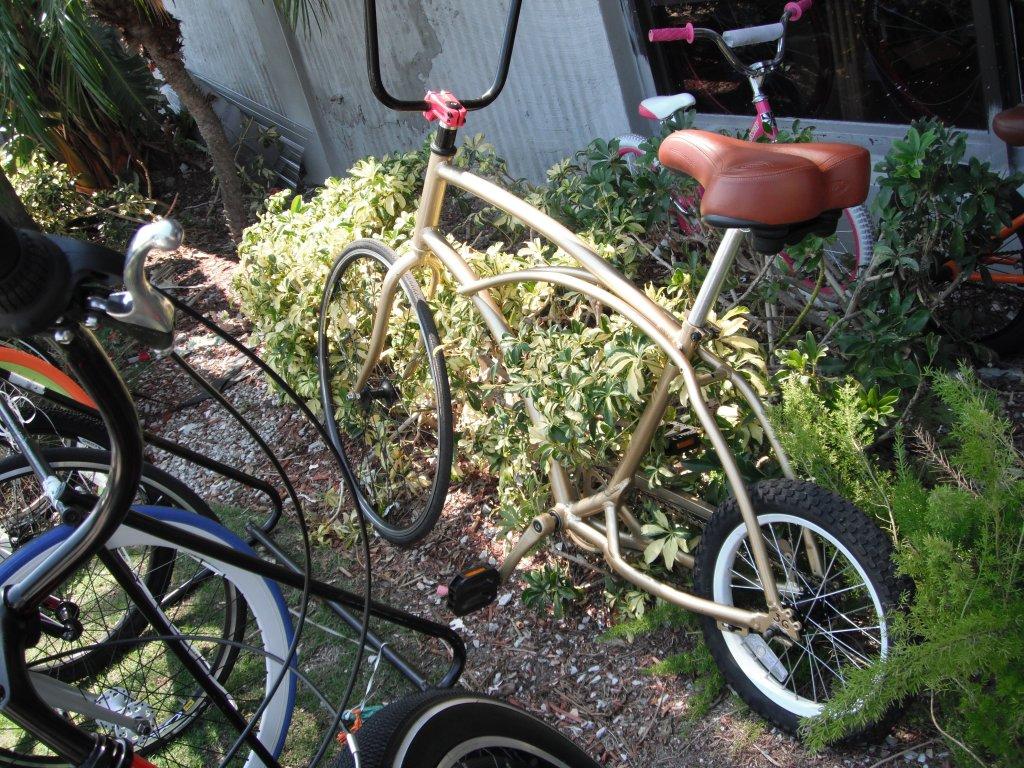 Daily fatbike pic thread-dscf1680.jpg