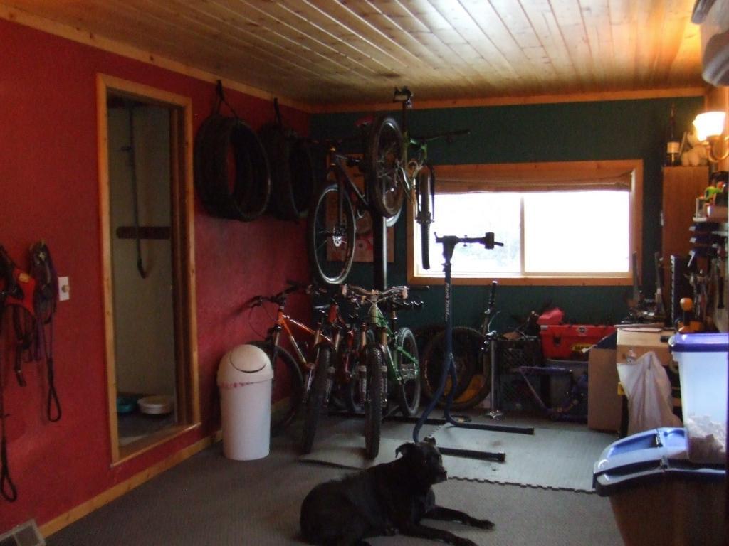 Bike Room Passion ruined by Jillwagon wife!-dscf2766.jpg