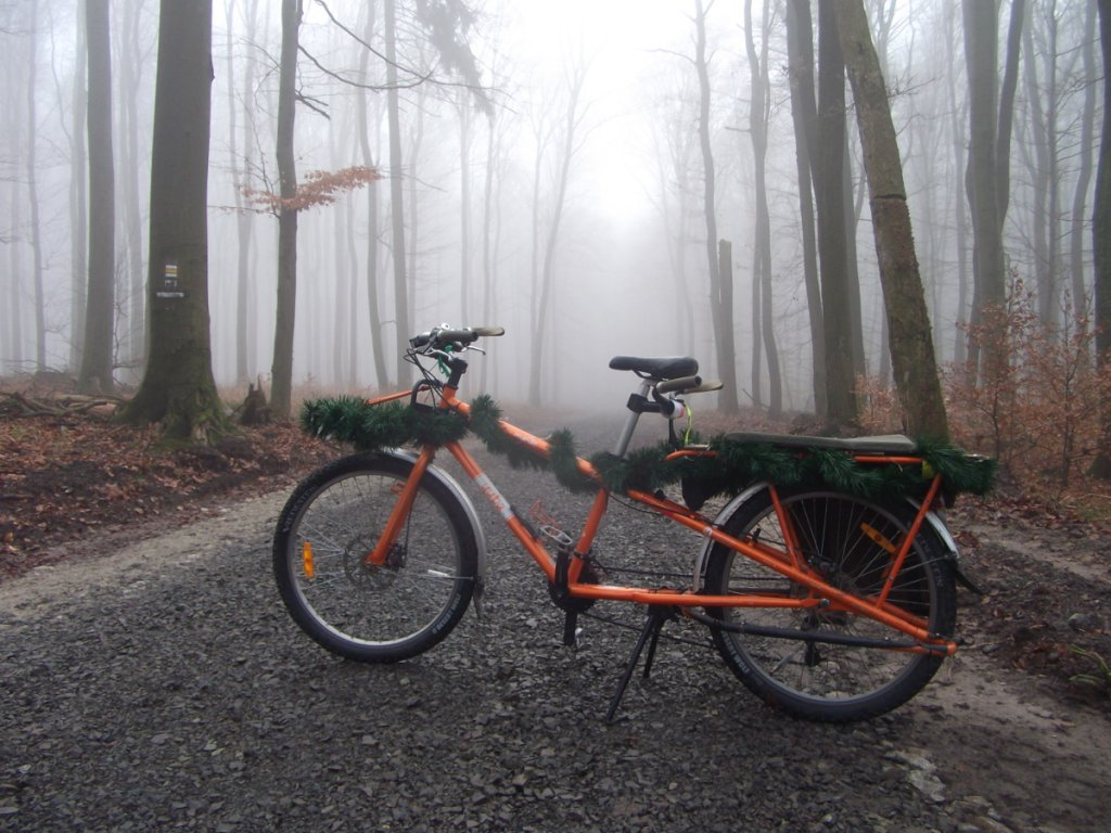 Post Pics of your Cargo Bike-dscf5738.jpg