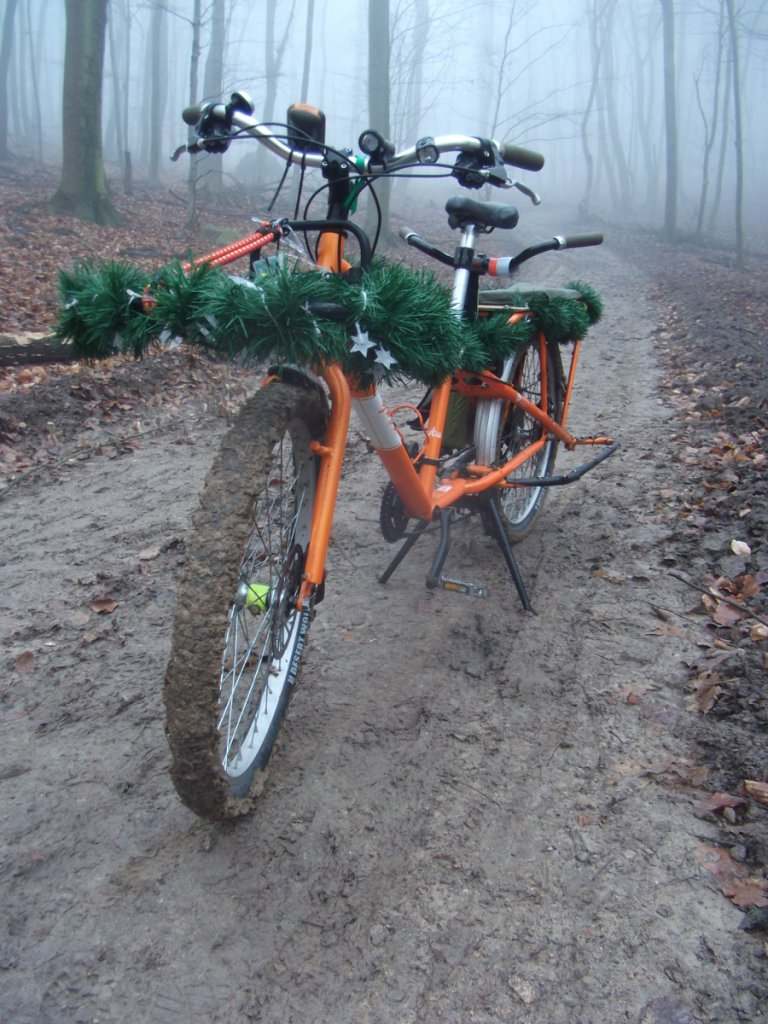 Post Pics of your Cargo Bike-dscf5744.jpg