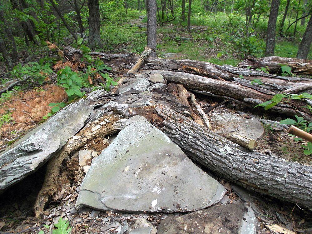 Moon Lake Trail damage reports here-dscf6046_1000x1000.jpg