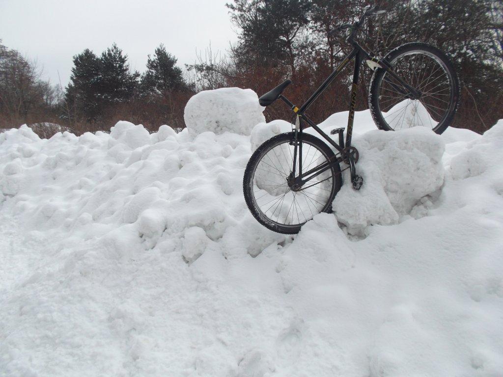 Winter Fun!-dscf7285.jpg