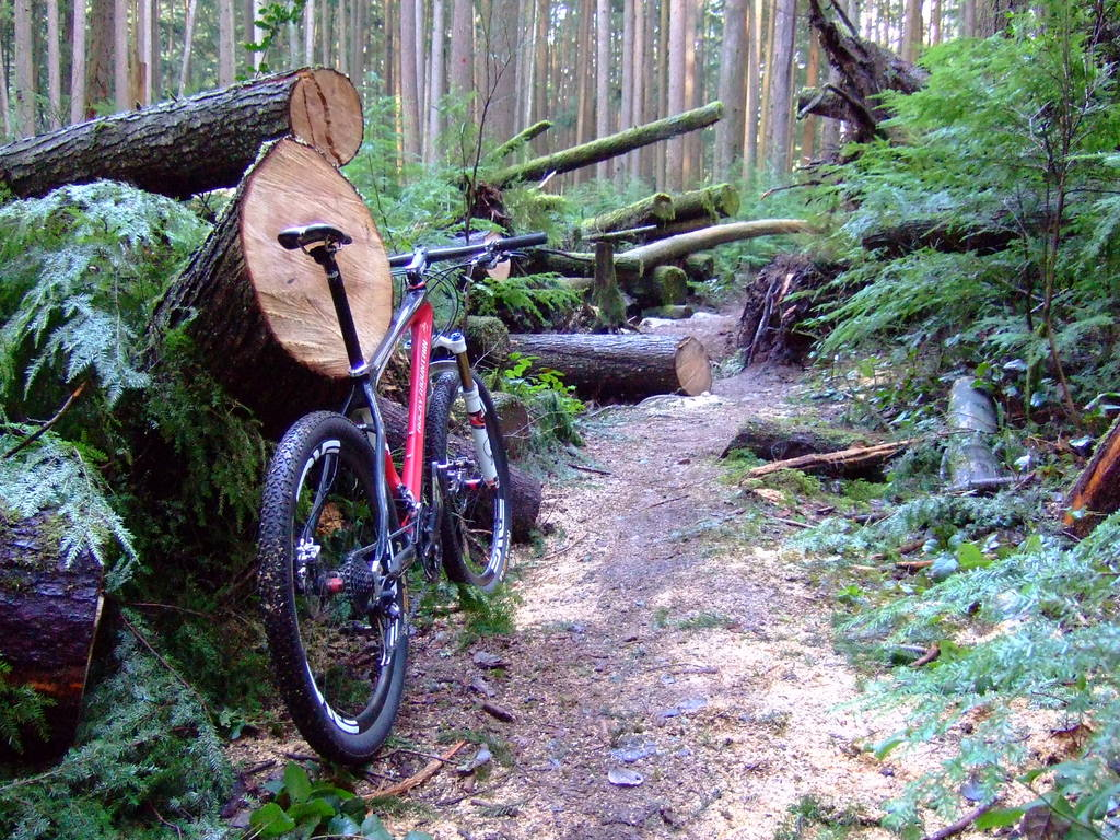Moving to North of Vancouver, bike advice please ?..-dscf7735.jpg