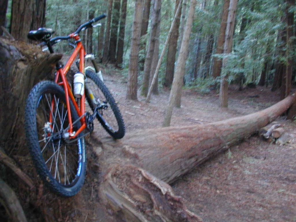 Bike anthology - let's hear about bikes you've owned-dscn0010.jpg