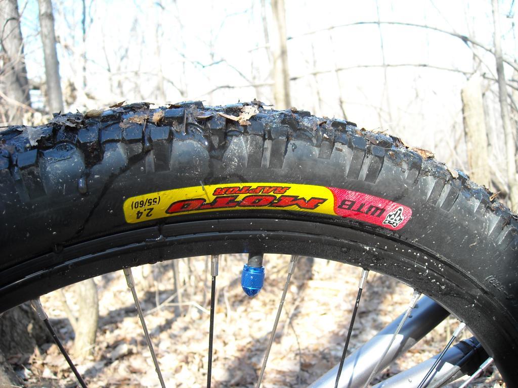 Too clean to be true (I love my bike)-dscn0028.jpg