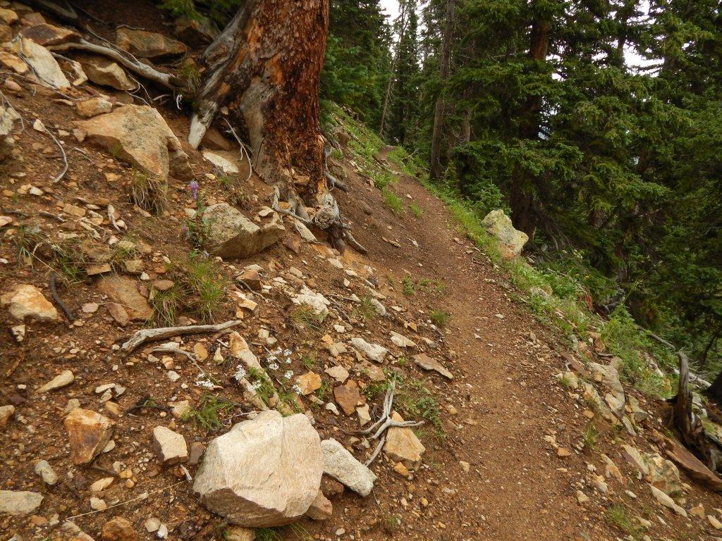 The NM Trail Pix Thread-dscn0056.jpg
