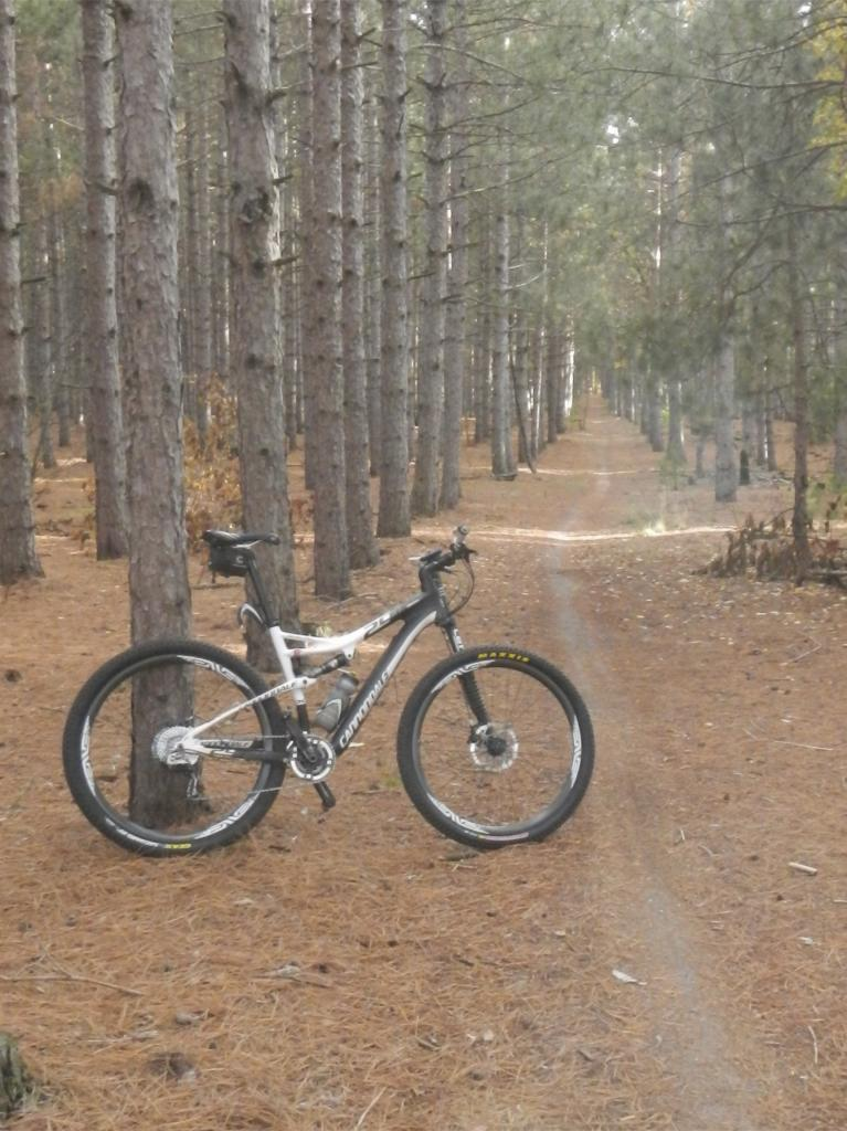 Post a pic of your Cannondale  29er-dscn0057.jpg