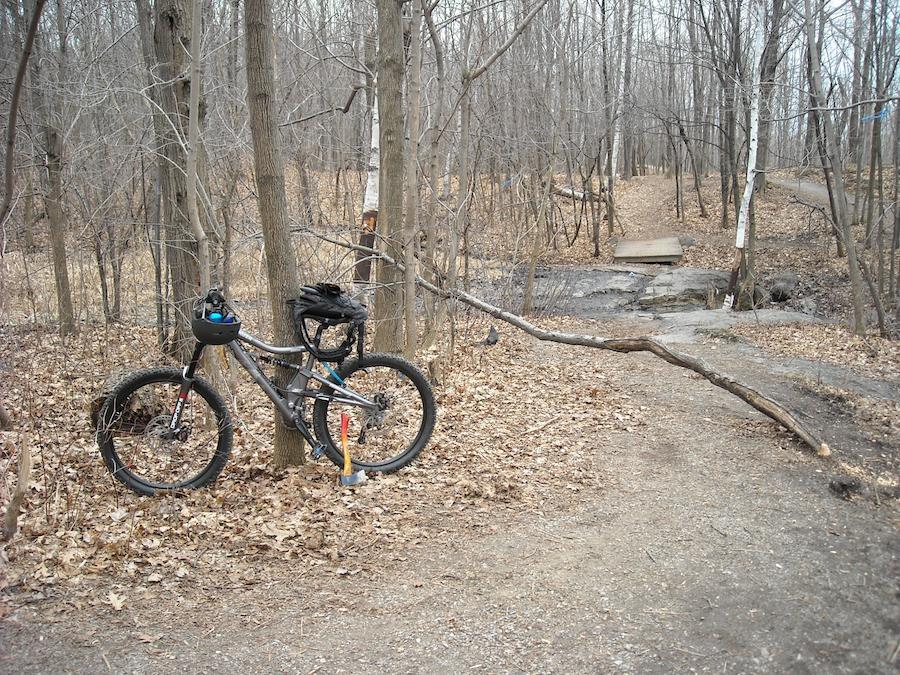 Too clean to be true (I love my bike)-dscn0065_web.jpg
