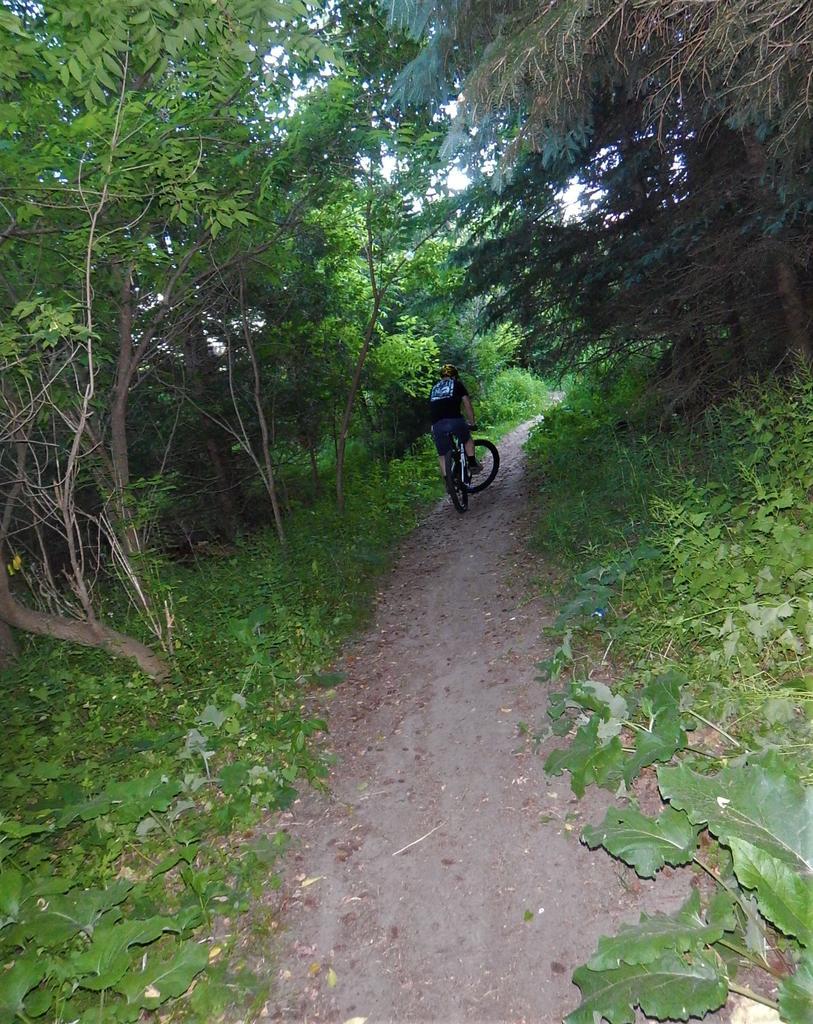 Local Trail Rides-dscn0099.jpg