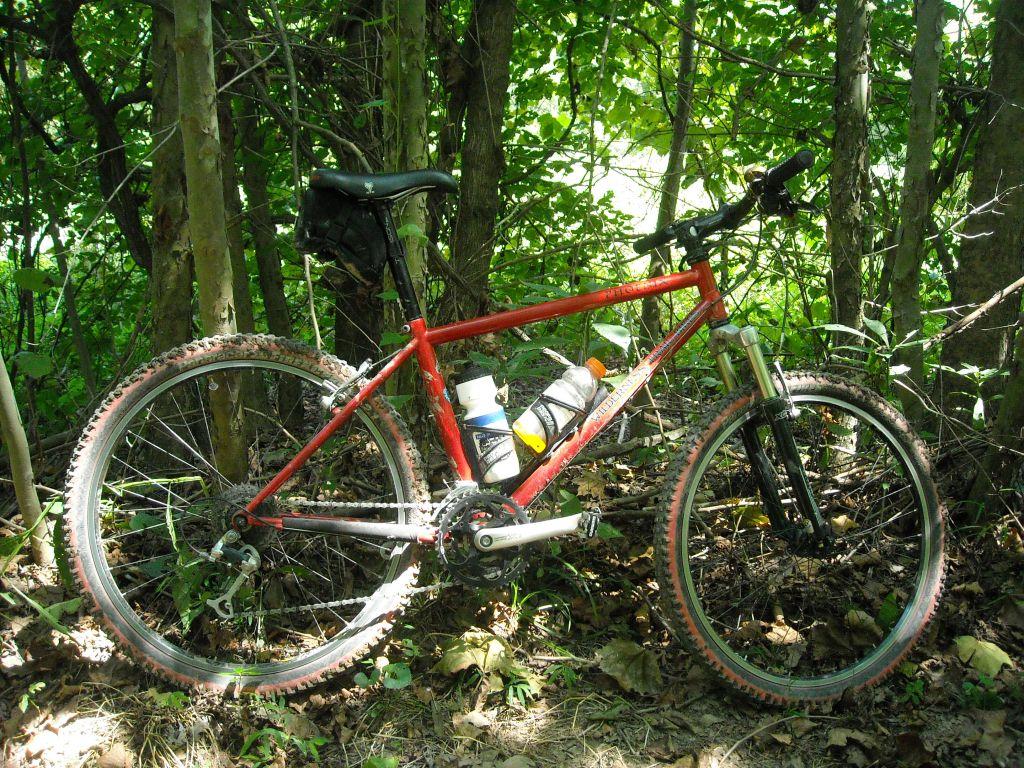Any other Clydes ride vintage?-dscn0250.jpg