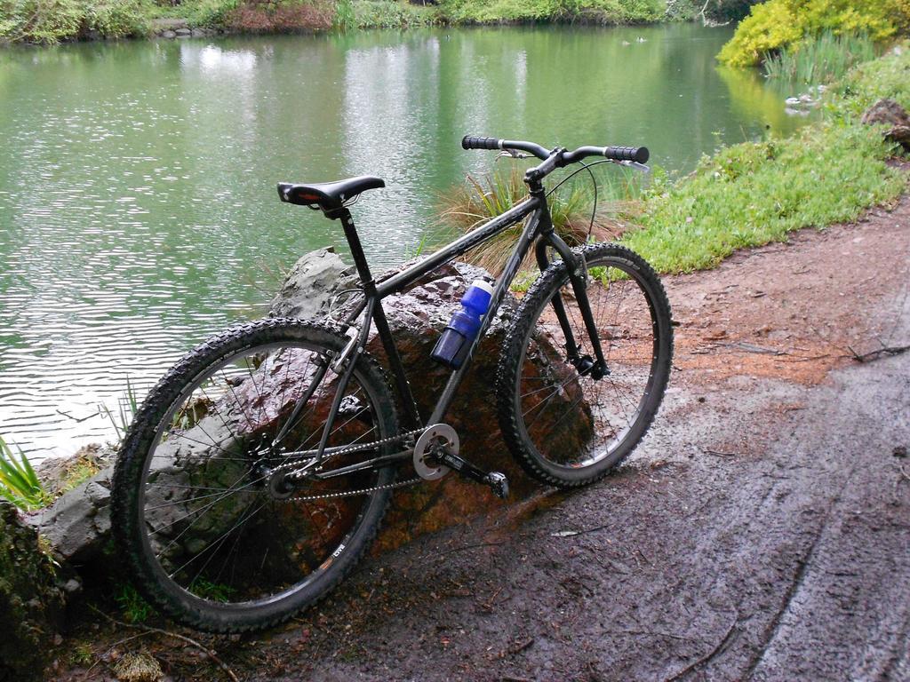 Post Pictures of your Steel Bikes!-dscn0345.jpg