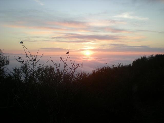 Assignment: Norcal Sunset Photos-dscn0507.jpg