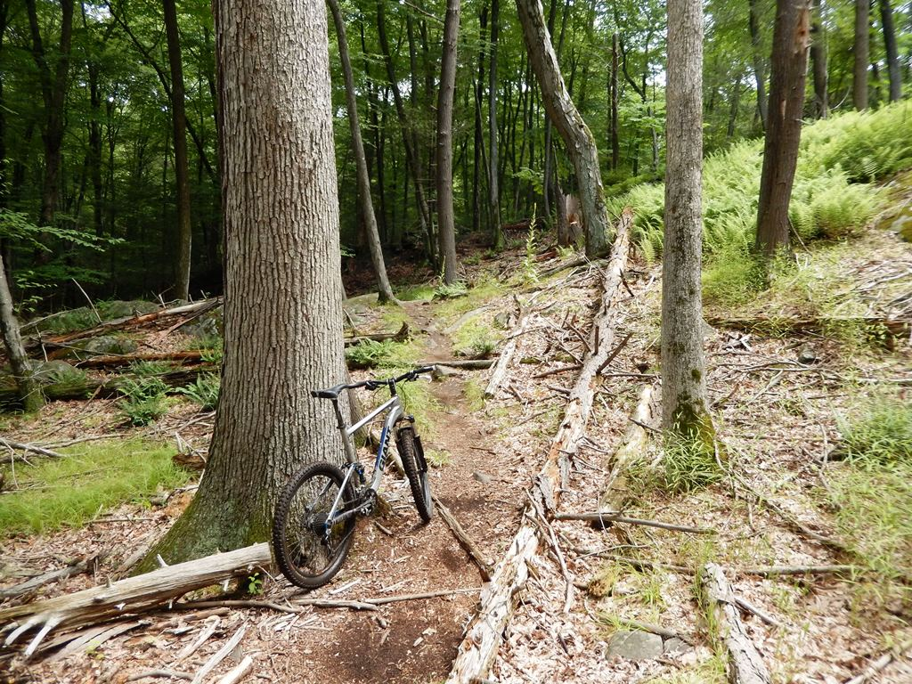 Show us a picture of your 26er MTB that you still use on the trails-dscn0561.jpg