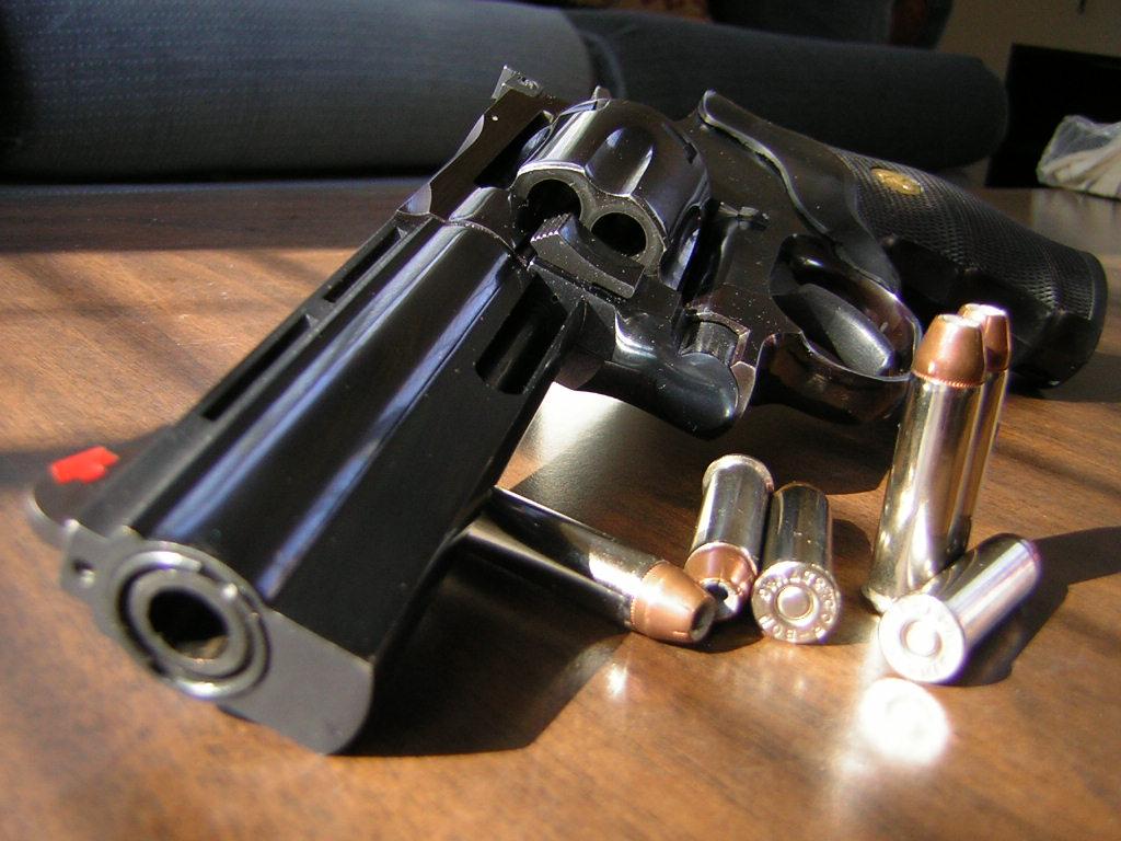 I owned the 44 Magnum !-dscn0645.jpg