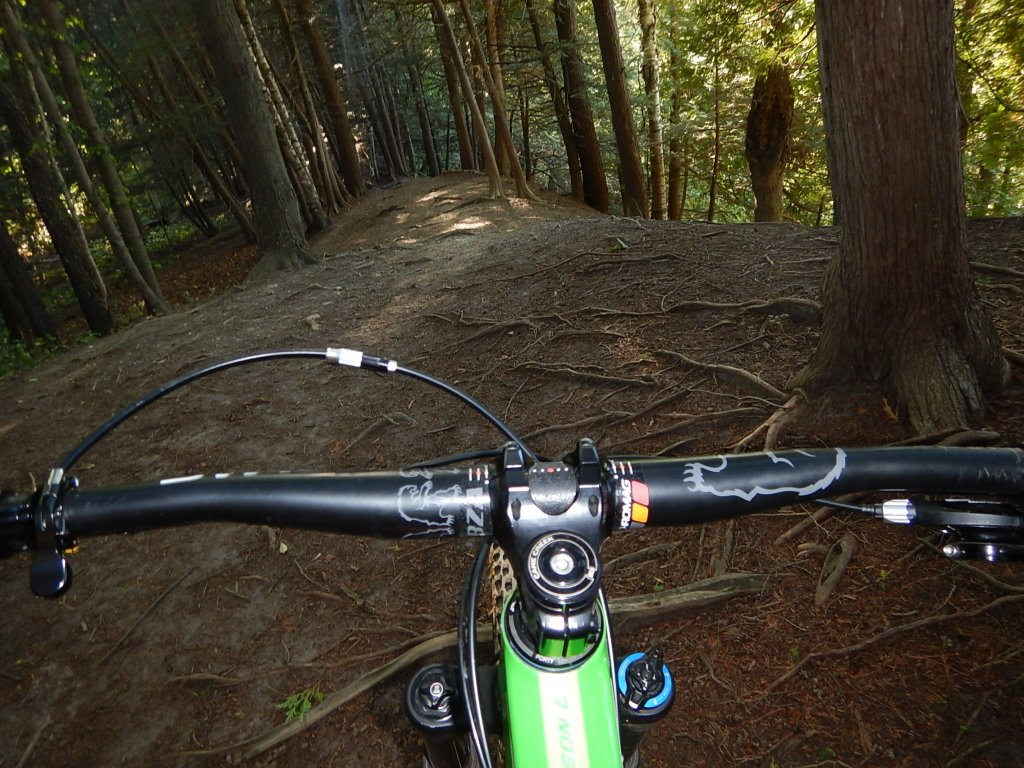 did you ride today?-dscn1010.jpg