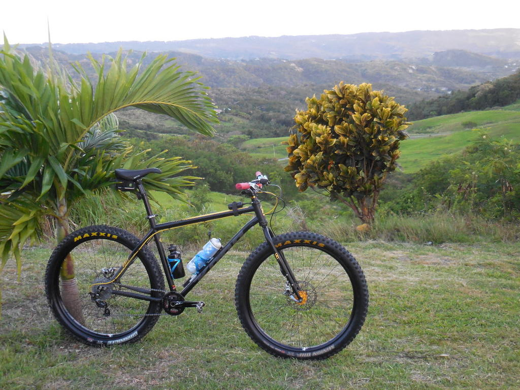 2017 Kona Unit - verdict?-dscn1263_fb.jpg