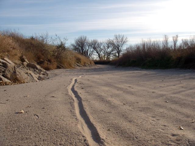 Beach/Sand riding picture thread.-dscn1849.jpg