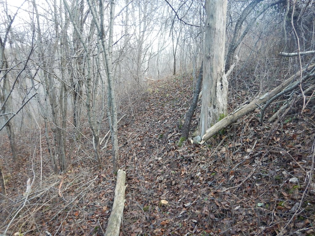 Local Trail Rides-dscn2123.jpg