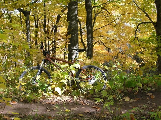 Wisconsin Trail Photos-dscn2269.jpg