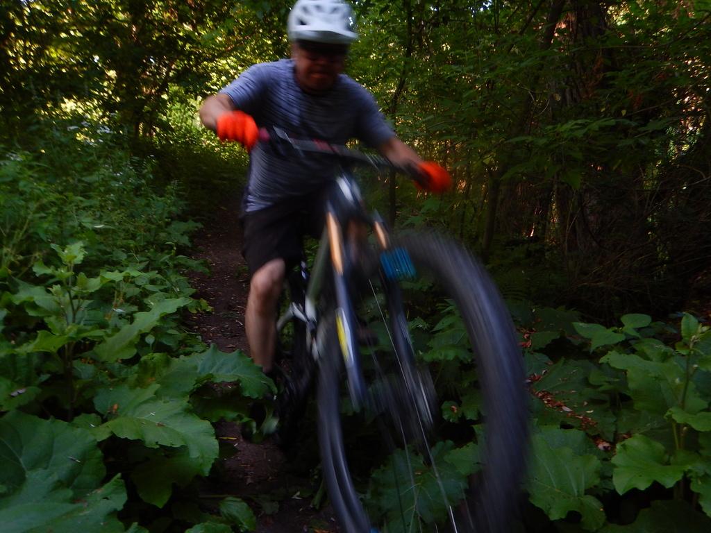 Local Trail Rides-dscn2470.jpg