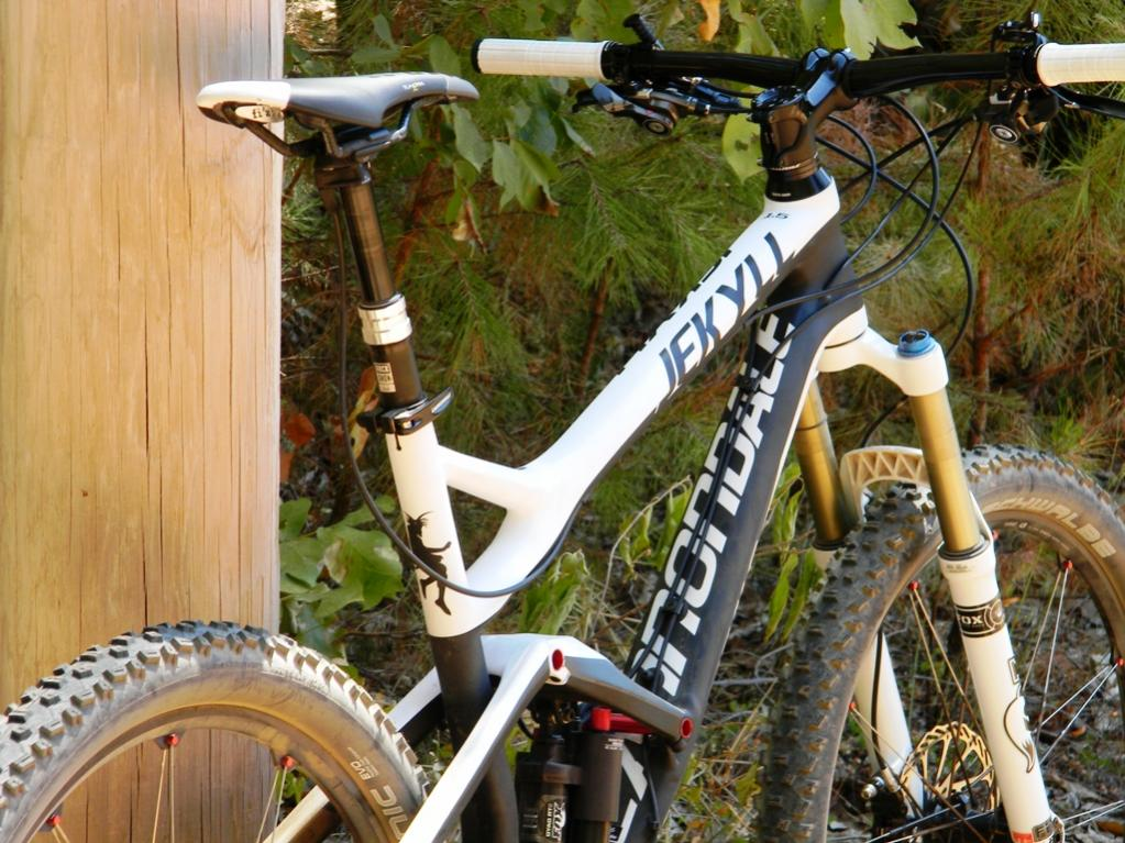 How are Cannondale doing?-dscn2558.jpg