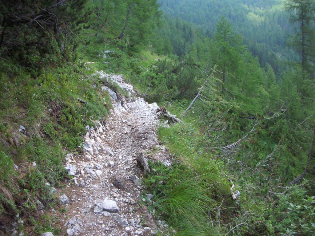 Dolomiti di Brenta-dscn2899.jpg