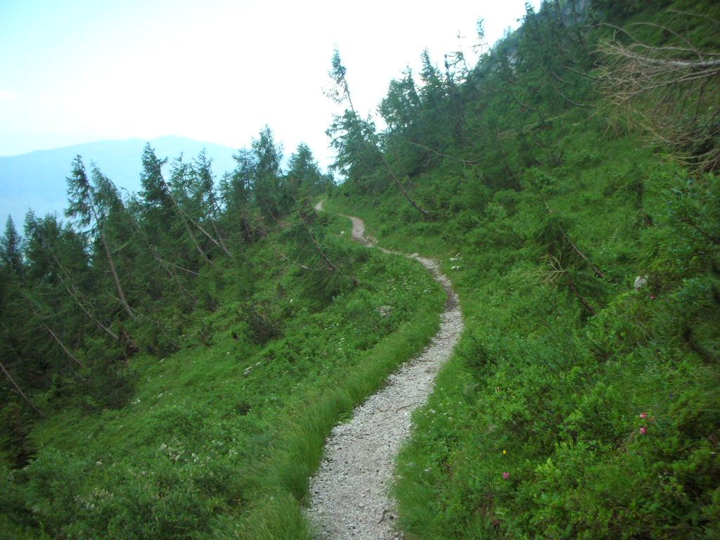 Dolomiti di Brenta-dscn2900.jpg