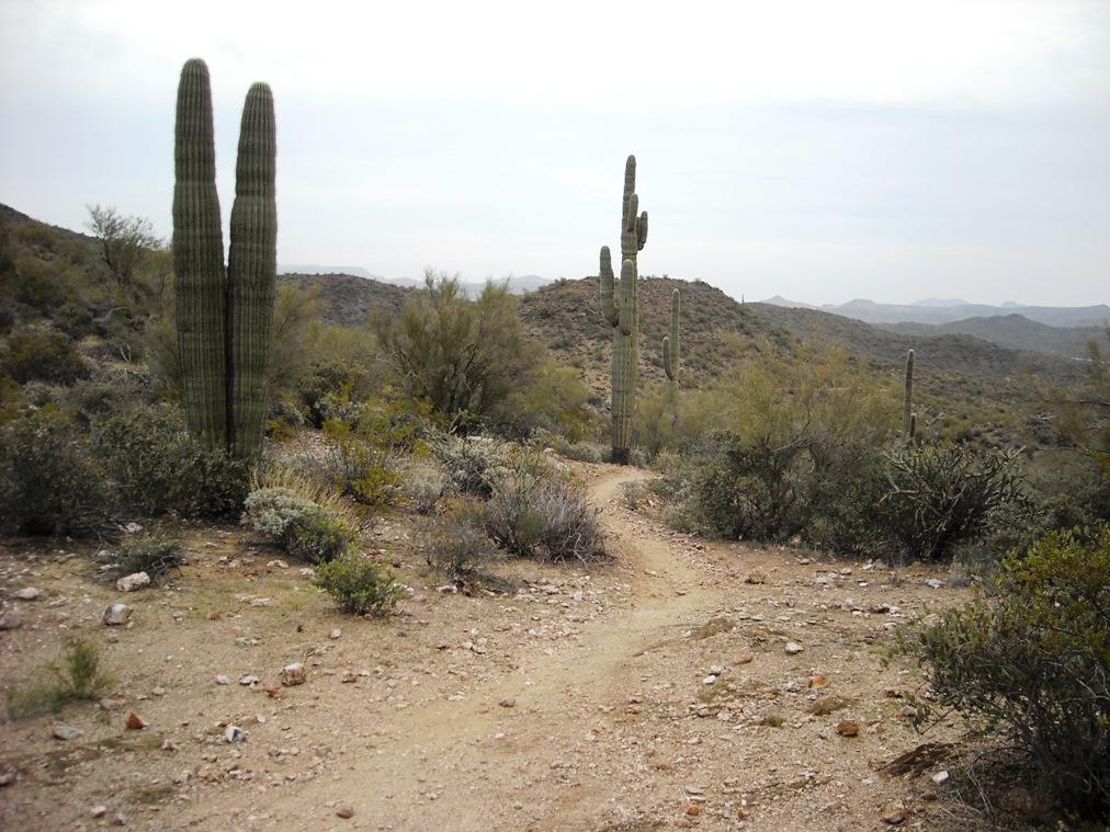 Black Canyon Trail-dscn3107.jpg