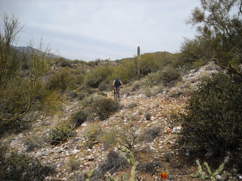 Black Canyon Trail-dscn3108.jpg