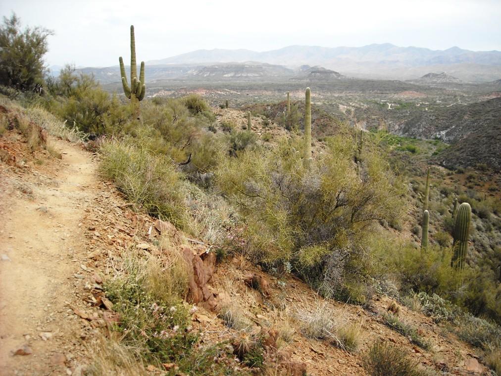 Black Canyon Trail-dscn3109.jpg