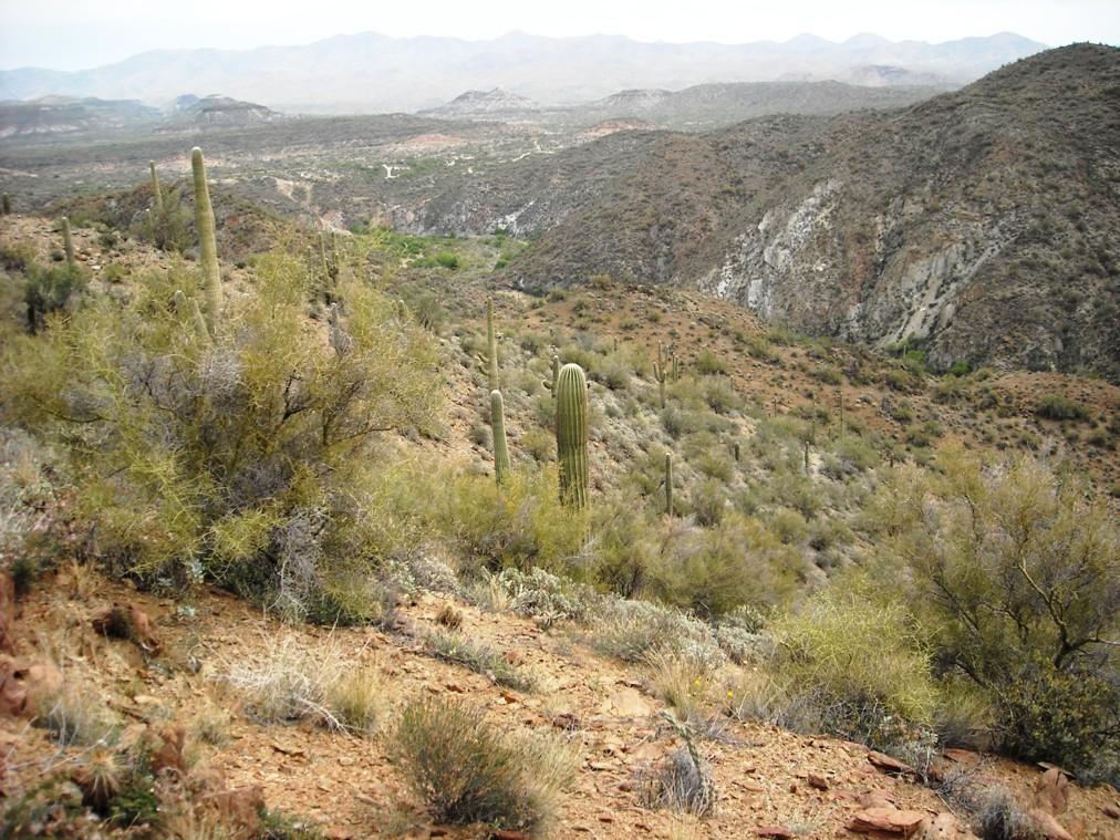 Black Canyon Trail-dscn3111.jpg