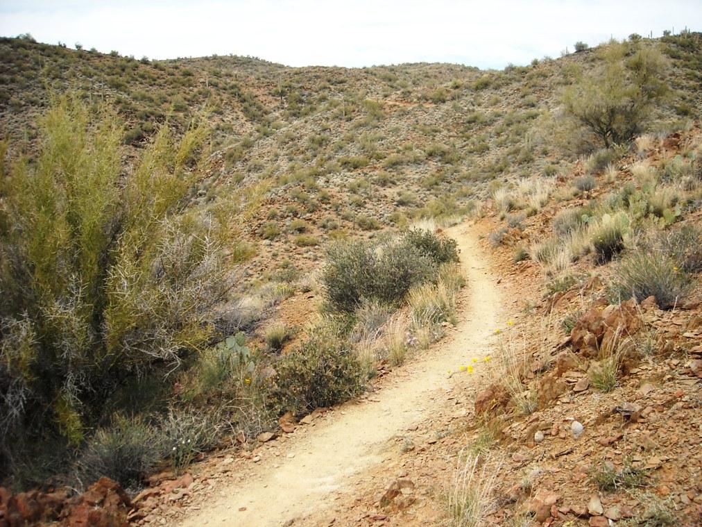 Black Canyon Trail-dscn3112.jpg
