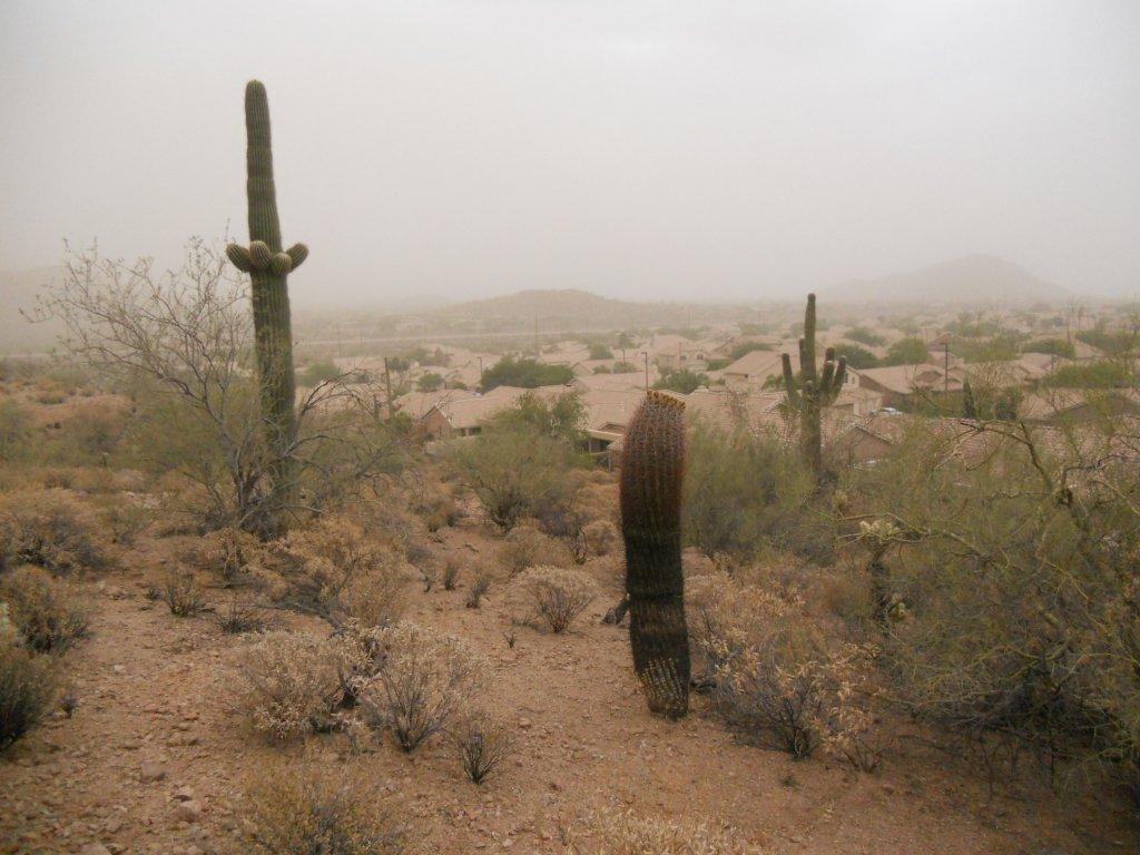 Humidity-dscn3341.jpg