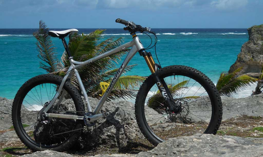 Does anyone ride their Phantom 29er for Dirt jumps & pump tracks besides just trails?-dscn4769.jpg