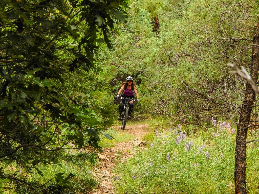 The NM Trail Pix Thread-dscn5051.jpg