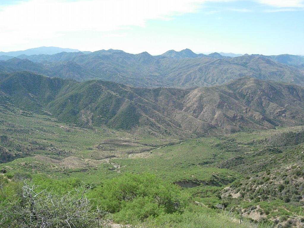 Reavis Canyon, Arizona Trail-dscn5838.jpg