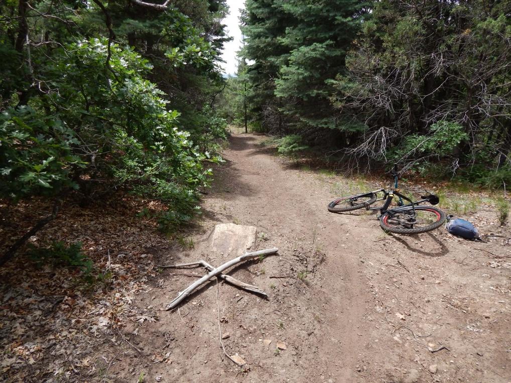 The NM Trail Pix Thread-dscn8135.jpg