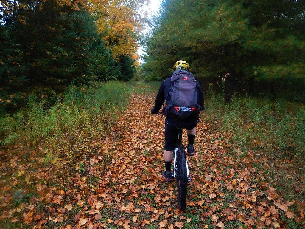 Local Trail Rides-dscn8622.jpg