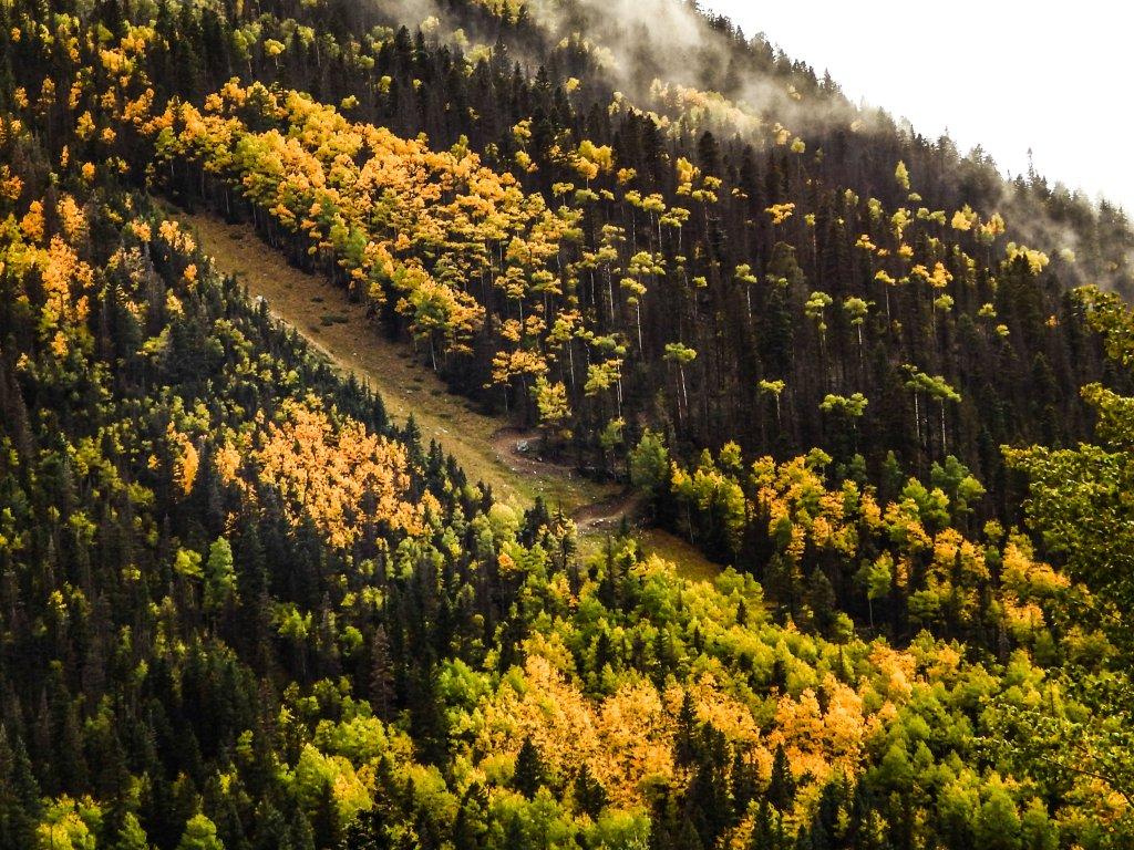 The NM Trail Pix Thread-dscn8693-2.jpg