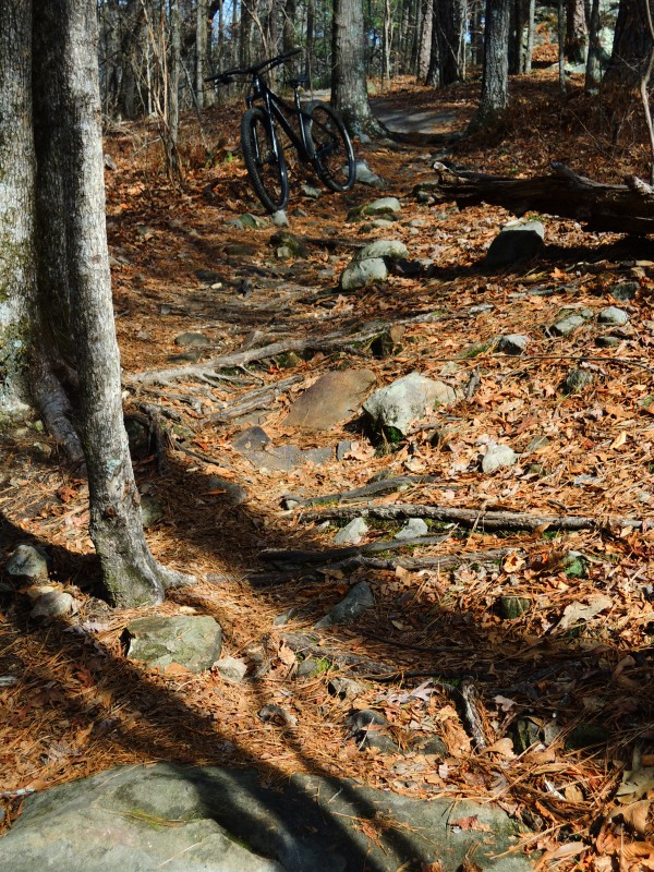 The All Mountain Hardtail Thread. Post up yours.-dscn9426.jpg