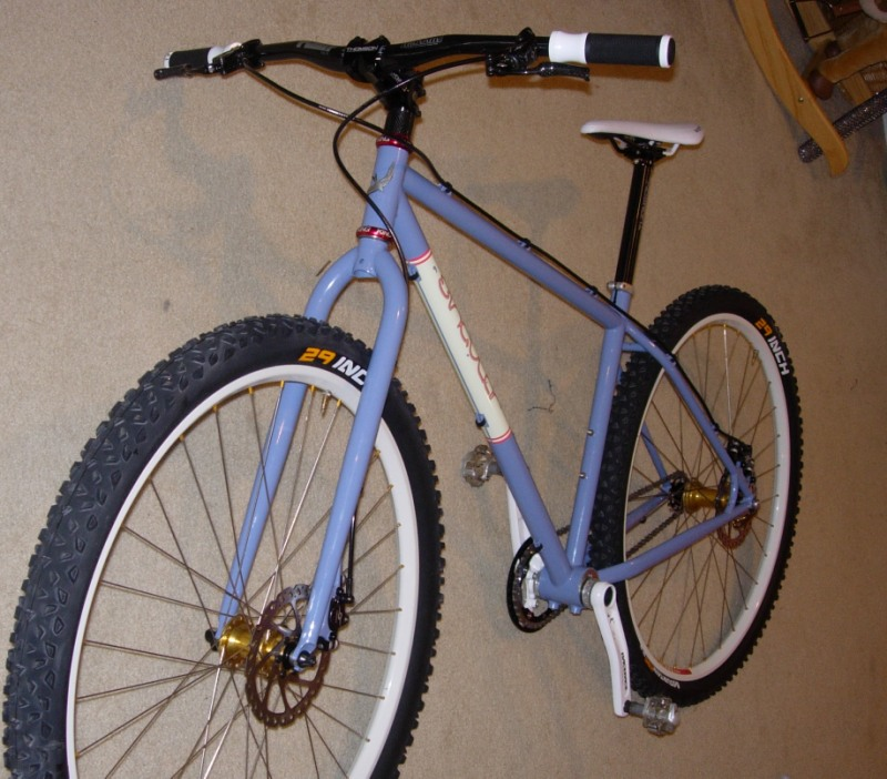 Post pics of your FULLY RIGID SS 29er-dscn9963-modified-.jpg