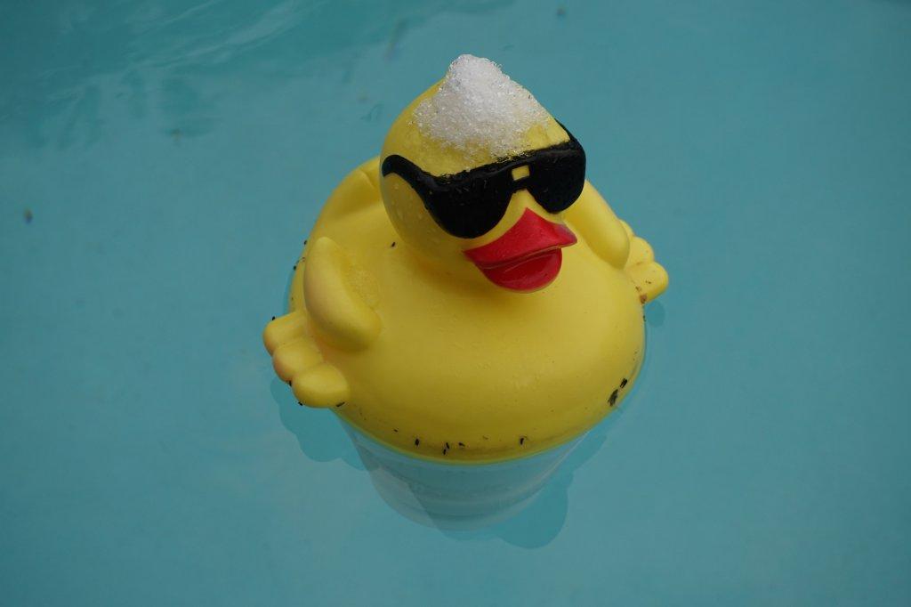 Happy new Year all-duck-smaller.jpg