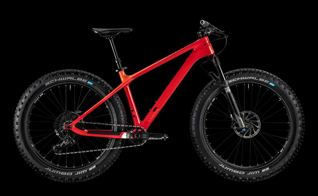Fat Bike Comparenator-dude2019.jpg