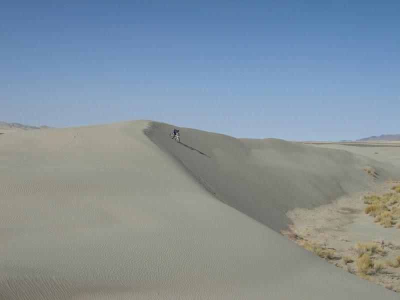 Fat Bikes better on sand or snow?-dune47660.jpg