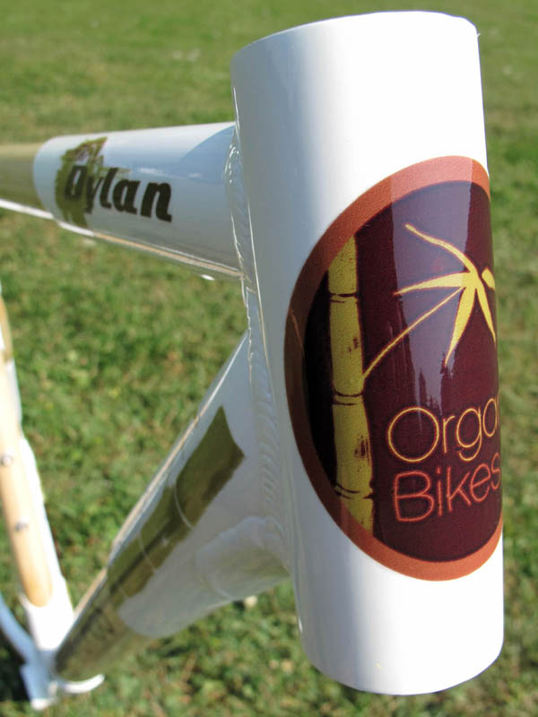 Can Commuting Get Any Greener?-dylan-frame-03.jpg
